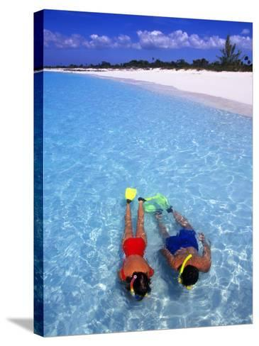 Two People Snorkelling in Blue Water Near Beach-Greg Johnston-Stretched Canvas Print