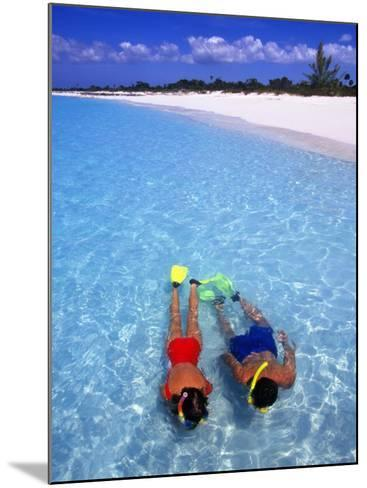 Two People Snorkelling in Blue Water Near Beach-Greg Johnston-Mounted Photographic Print