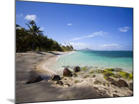 Nisbett Plantation Beach-Greg Johnston-Mounted Photographic Print