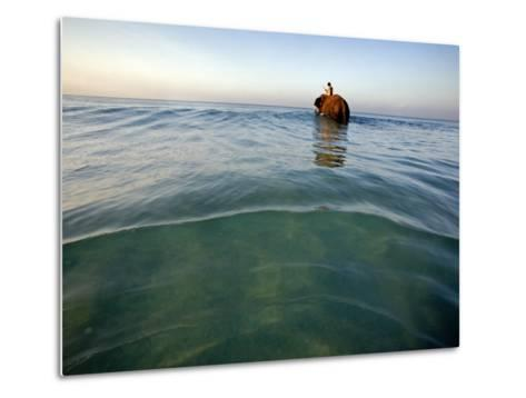 Elephant 'Rajes' Wading into Sea with His Mahout on Back-Johnny Haglund-Metal Print