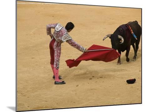 Bullfight at Plaza De Toros De Valencia-Krzysztof Dydynski-Mounted Photographic Print