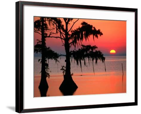 Sunrise at Lake Palourde with Spanish Moss Trees in Silhouette-John Elk III-Framed Art Print