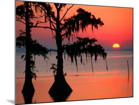 Sunrise at Lake Palourde with Spanish Moss Trees in Silhouette-John Elk III-Mounted Photographic Print