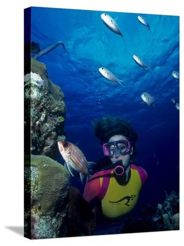 Diver Looking at Squirrelfish (Holocentrus Adscensionis) on Voral Head-Michael Lawrence-Stretched Canvas Print