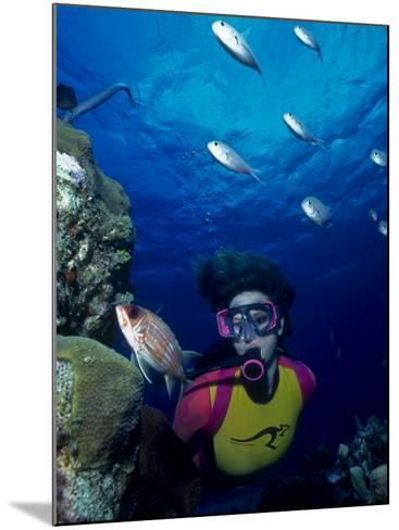 Diver Looking at Squirrelfish (Holocentrus Adscensionis) on Voral Head-Michael Lawrence-Mounted Photographic Print