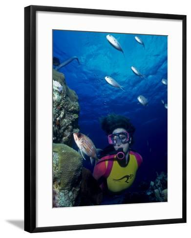 Diver Looking at Squirrelfish (Holocentrus Adscensionis) on Voral Head-Michael Lawrence-Framed Art Print