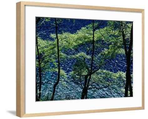 Overhead View of Rhinoceros Lake-Krzysztof Dydynski-Framed Art Print