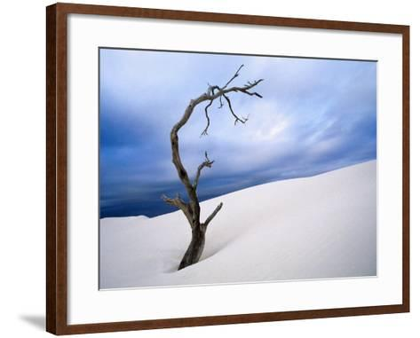 Dead Tree in Delisser Sandhills-Mitch Reardon-Framed Art Print