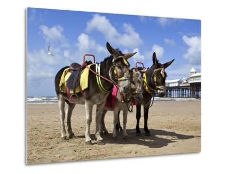 Donkey Rides on Blackpool Beach-Neil Setchfield-Metal Print