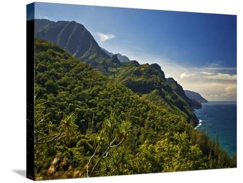 Na Pali Coast, as Seen from the Kalalau Trail-Merten Snijders-Stretched Canvas Print