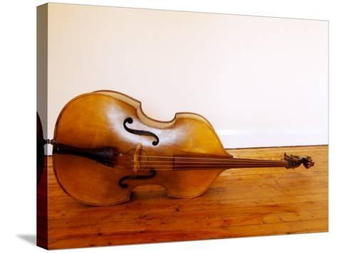 3/4 Size Double Bass-Oliver Strewe-Stretched Canvas Print