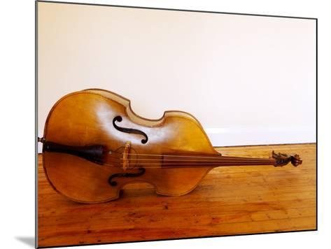 3/4 Size Double Bass-Oliver Strewe-Mounted Photographic Print