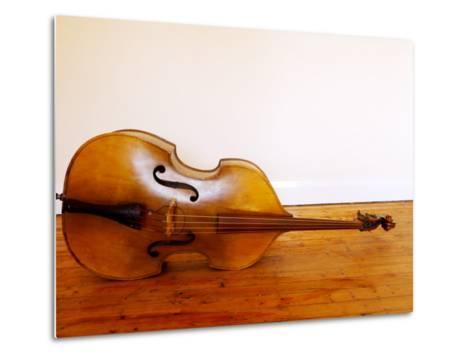 3/4 Size Double Bass-Oliver Strewe-Metal Print