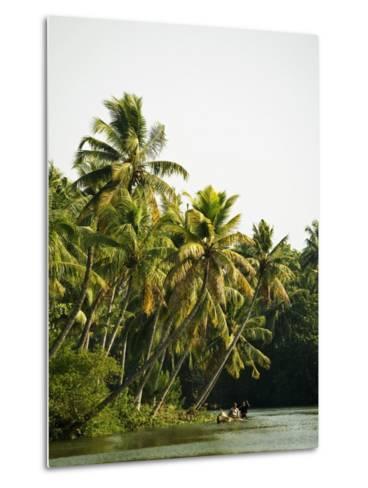 Backwater Scene from Monroe Island-Anders Blomqvist-Metal Print