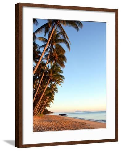 Dawn on Ellis Beach, Near Palm Cove-Andrew Bain-Framed Art Print