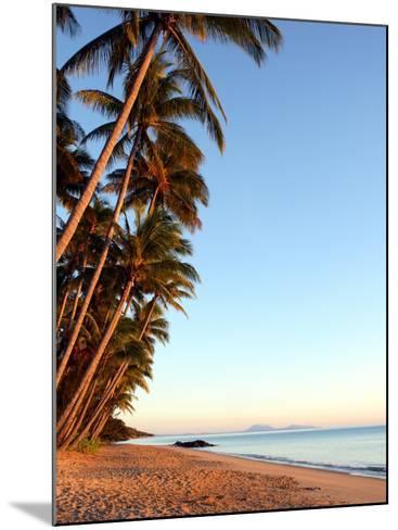 Dawn on Ellis Beach, Near Palm Cove-Andrew Bain-Mounted Photographic Print