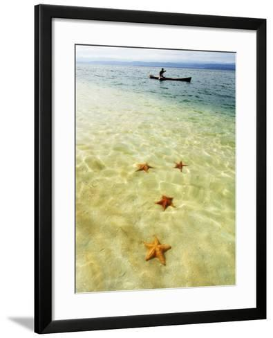 Sea Stars in Tropical Water at Star Beach-Alfredo Maiquez-Framed Art Print