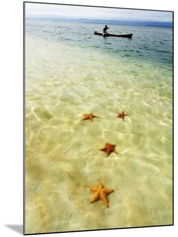 Sea Stars in Tropical Water at Star Beach-Alfredo Maiquez-Mounted Photographic Print