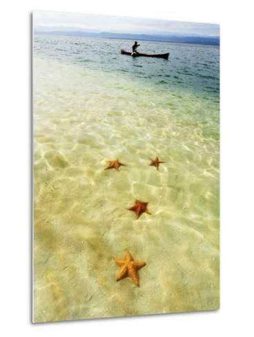Sea Stars in Tropical Water at Star Beach-Alfredo Maiquez-Metal Print
