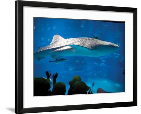 Excited School Children Gazing at Whale Shark at Osaka Aquarium-Antony Giblin-Framed Art Print