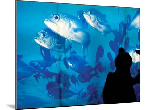 Excited School Children Gazing at Fish at Osaka Aquarium-Antony Giblin-Mounted Photographic Print