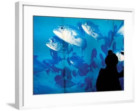 Excited School Children Gazing at Fish at Osaka Aquarium-Antony Giblin-Framed Art Print