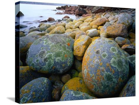 Granite Boulders at Wineglass Bay-Rob Blakers-Stretched Canvas Print