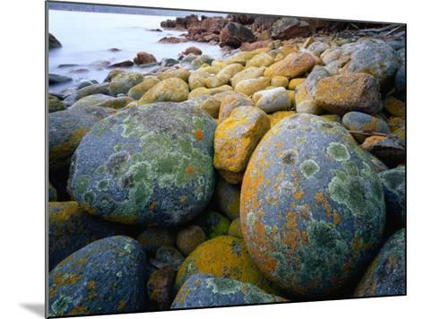 Granite Boulders at Wineglass Bay-Rob Blakers-Mounted Photographic Print