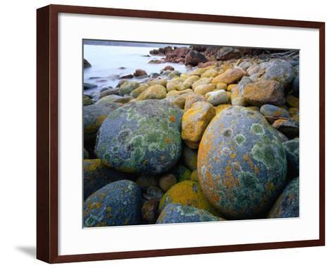 Granite Boulders at Wineglass Bay-Rob Blakers-Framed Art Print