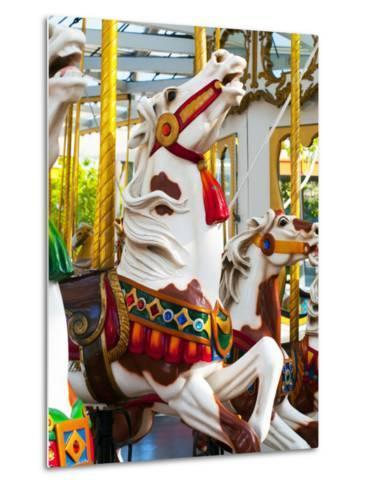 Carousel Horses at Yerba Buena Center for the Arts-Sabrina Dalbesio-Metal Print