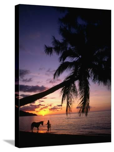 Horse and Rider Take an Easy Stroll Along Cane Bay in St Croix-Steve Simonsen-Stretched Canvas Print