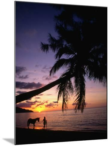 Horse and Rider Take an Easy Stroll Along Cane Bay in St Croix-Steve Simonsen-Mounted Photographic Print