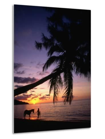 Horse and Rider Take an Easy Stroll Along Cane Bay in St Croix-Steve Simonsen-Metal Print