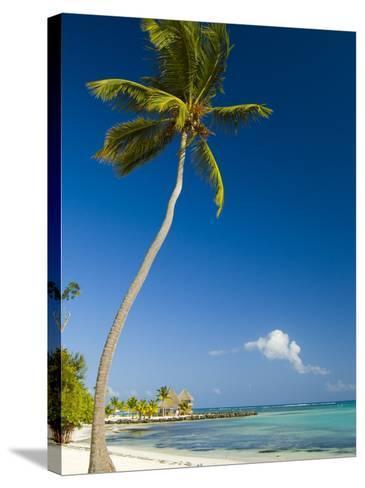 Beach at Punta Cana-Veronica Garbutt-Stretched Canvas Print