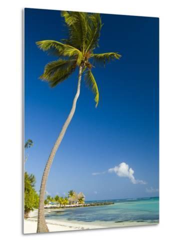 Beach at Punta Cana-Veronica Garbutt-Metal Print