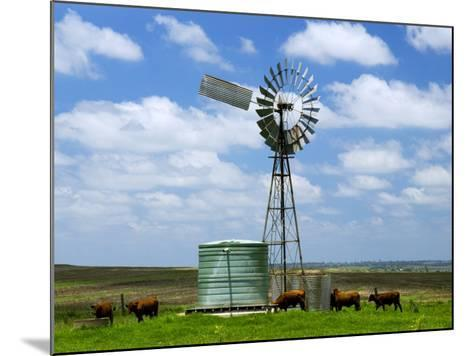 Watering Cattle Beneath Windmill on Darling Downs, Southern Queensland-Philip Game-Mounted Photographic Print