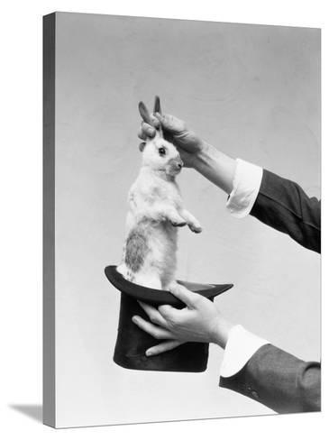 Hands of Magician Performing Magic Trick, Pulling Rabbit Out of Top Hat-H^ Armstrong Roberts-Stretched Canvas Print