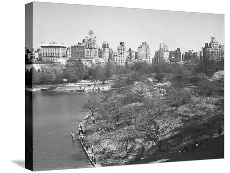 New York City, Central Park (B&W)-George Marks-Stretched Canvas Print