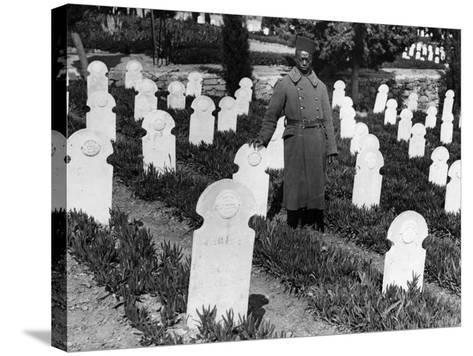 War Cemetery--Stretched Canvas Print