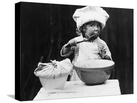 Young Chef--Stretched Canvas Print