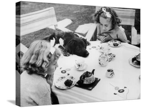 Tea Party--Stretched Canvas Print