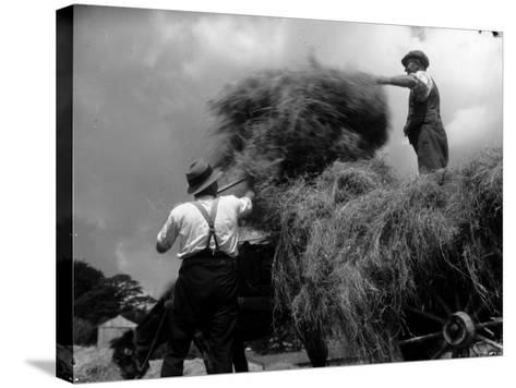 Haymaking-Chaloner Woods-Stretched Canvas Print