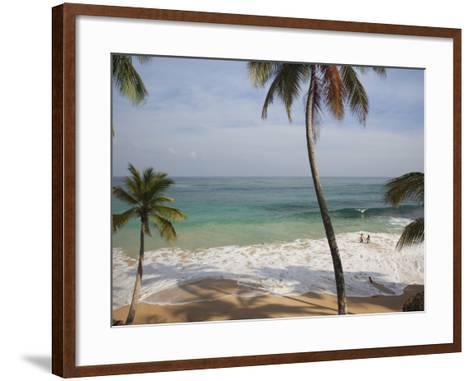 Playa Preciosa Beach, Abreu, North Coast, Dominican Republic-Walter Bibikow-Framed Art Print