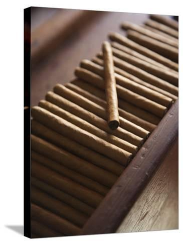Cigars at La Leyenda Del Cigarro Cigar Factory, Santo Domingo, Dominican Republic-Walter Bibikow-Stretched Canvas Print