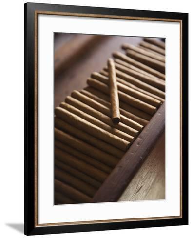 Cigars at La Leyenda Del Cigarro Cigar Factory, Santo Domingo, Dominican Republic-Walter Bibikow-Framed Art Print