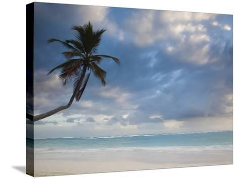 Bavaro Beach Palms at Dawn, Bavaro, Punta Cana Region, Dominican Republic-Walter Bibikow-Stretched Canvas Print