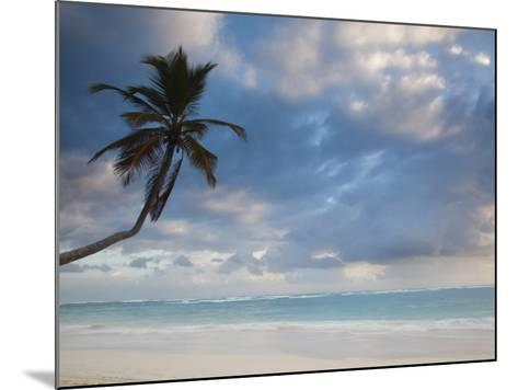 Bavaro Beach Palms at Dawn, Bavaro, Punta Cana Region, Dominican Republic-Walter Bibikow-Mounted Photographic Print