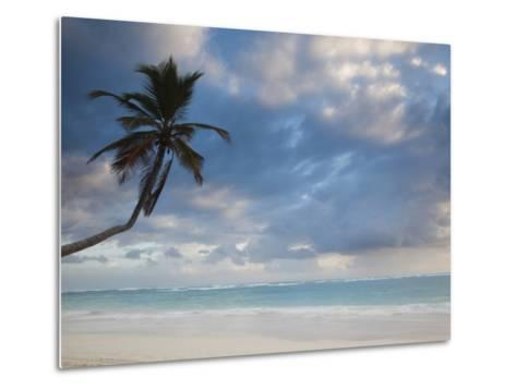 Bavaro Beach Palms at Dawn, Bavaro, Punta Cana Region, Dominican Republic-Walter Bibikow-Metal Print
