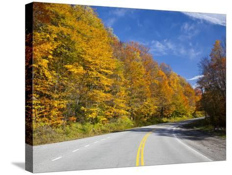 Monongahela National Forest at Route 250, Cheat Bridge, West Virginia, USA-Walter Bibikow-Stretched Canvas Print