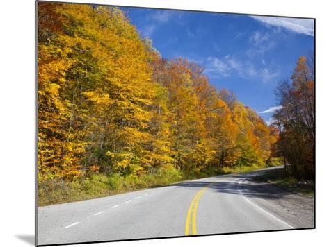Monongahela National Forest at Route 250, Cheat Bridge, West Virginia, USA-Walter Bibikow-Mounted Photographic Print